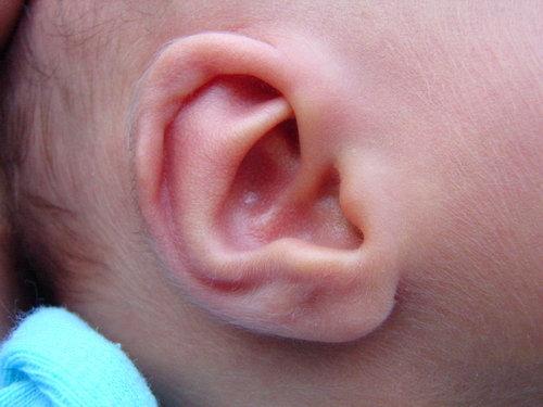 赤ちゃんが生まれたら必ずみんなが撮る写真06