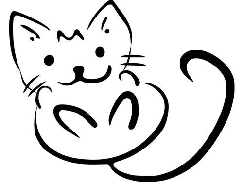 かわいい子猫が4年でこんなに威厳のある猫に