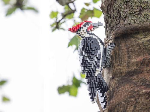 サンアントニオ動物園がレゴの動物を展示19
