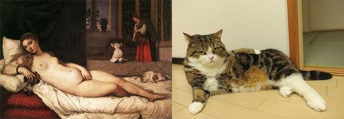 猫で再現するあの名画11