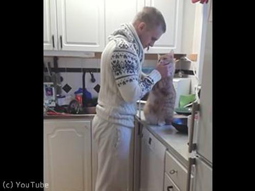 飼い主さんにべったり猫03