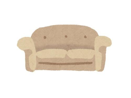 中古のソファを買ったら猫の鳴き声