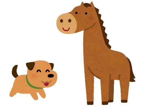 犬と馬00
