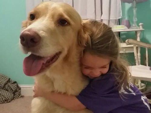 犬と娘の3年後01