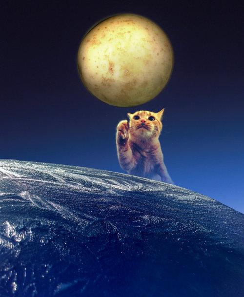 地球に見えるこの写真03