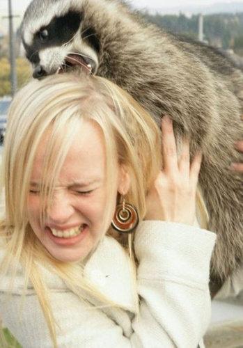 動物と女性たち01