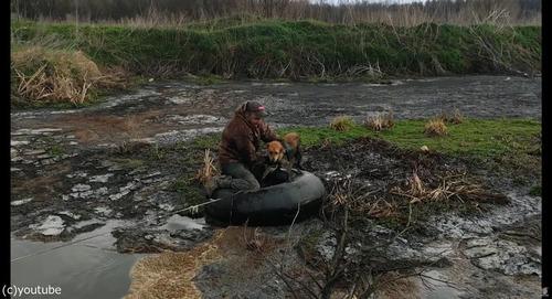 沼地にハマって動けない犬を救出04