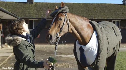 イギリスでは馬も紳士09