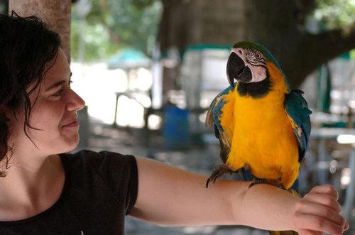 ルハン動物園09