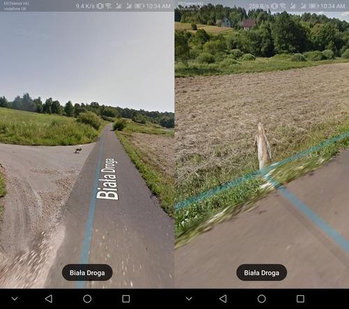 Googleストリートマップに写っていたウサギ02