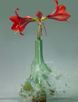 生け花と花瓶─破壊の美学01