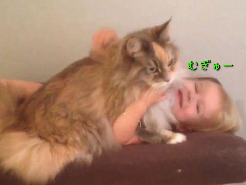 娘と猫がしている朝の儀式00