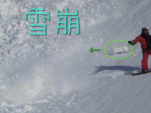 雪崩とウサギ00