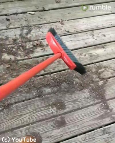 お掃除を手伝う子犬たち03