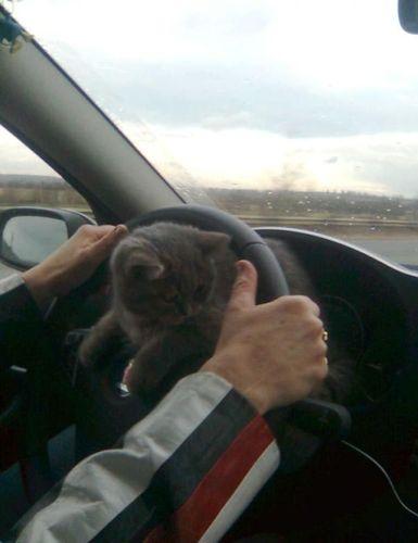 ロシアの危険な運転05
