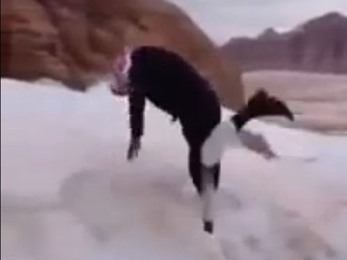 サウジアラビアの雪の楽しみ方02