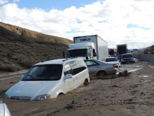 干ばつの続くカリフォルニアにようやく雨が降った08