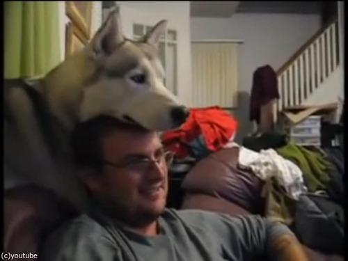 犬が頭の上に顔を乗せてくるとできる遊び01