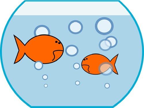 魚を持ってくる課題00