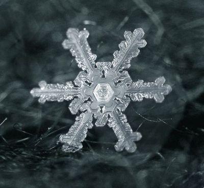 雪の結晶10