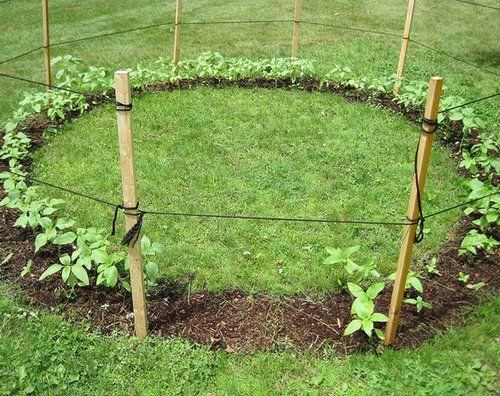 庭の格安DIY13