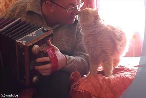 アコーディオンと猫03