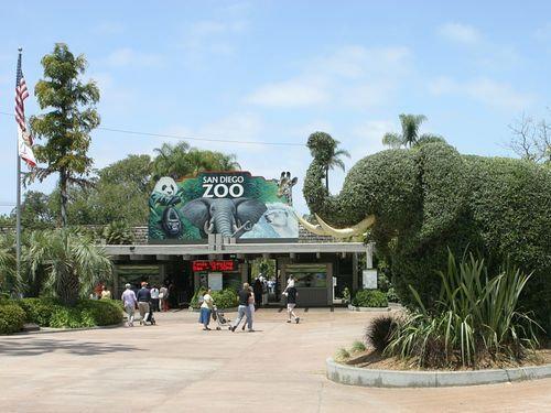 動物園の飼育係に質問