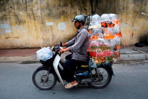 バイクで物を運ぶ限界01