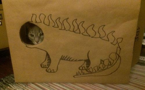 ダンボール猫アート01