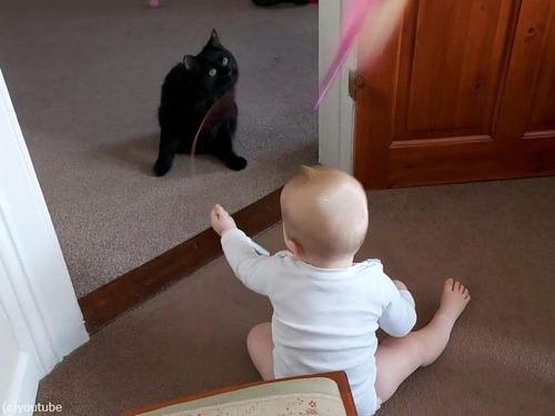 猫を操る赤ちゃん01