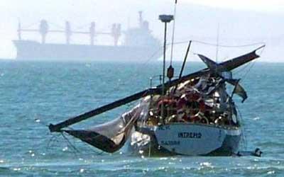 40トンの鯨がヨットに攻撃02
