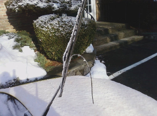 凍り付いた朝のこういう日04