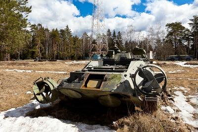 ロシアの森19