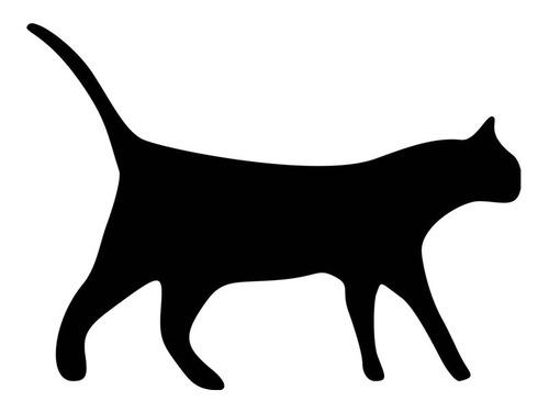 アライグマみたいな猫