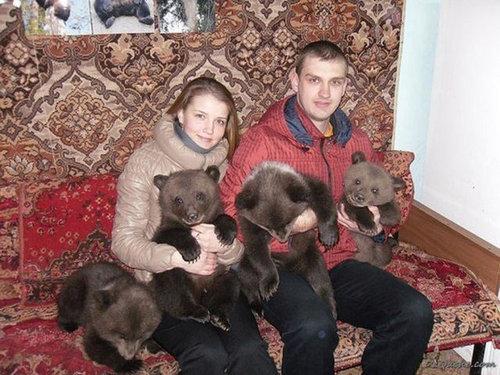 ロシアのクマ17