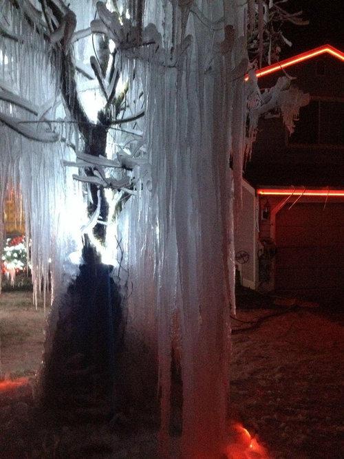 寒冷地仕様のクリスマスツリー05