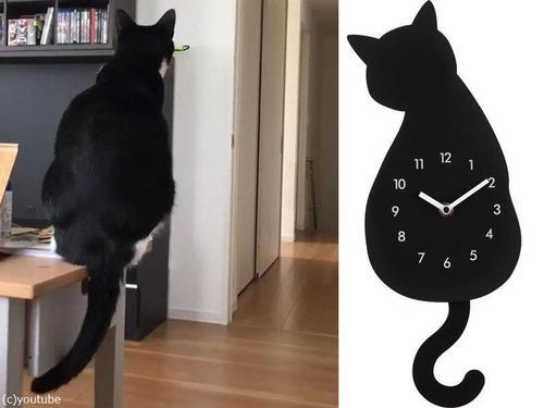 時計としっぽがシンクロする猫00