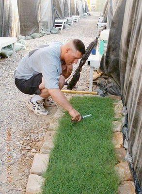 垣根で芝生を育てる