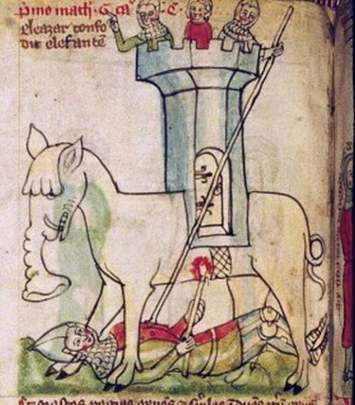中世の想像で描かれたゾウ11