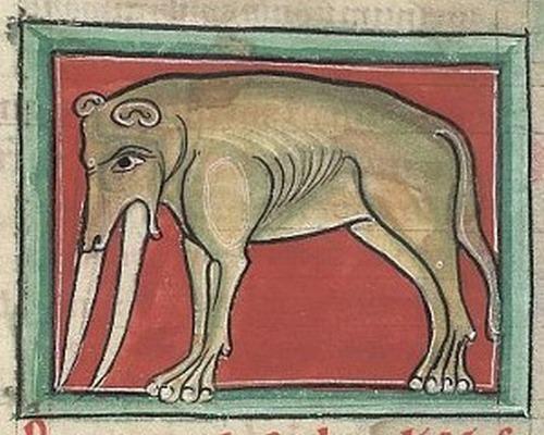 中世の想像で描かれたゾウ14