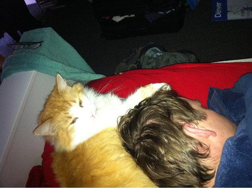 ペットと寝る理想と現実06
