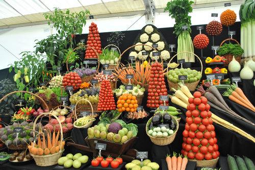 野菜の陳列アート03
