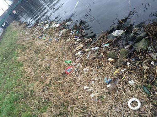 オランダの川辺をゴミ掃除00
