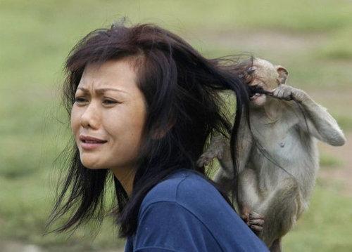 動物と女性たち21