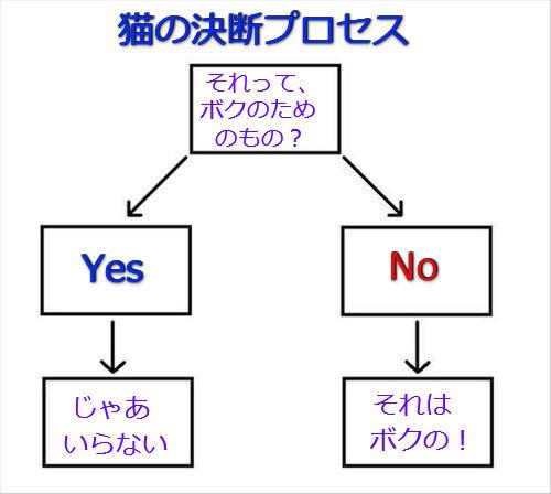 猫の決断プロセス01