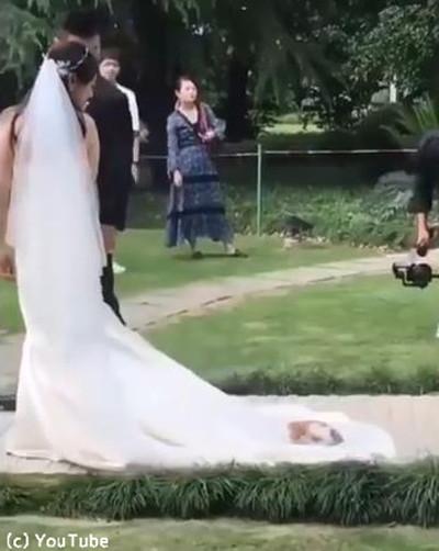 結婚式にキュートなお客さん01