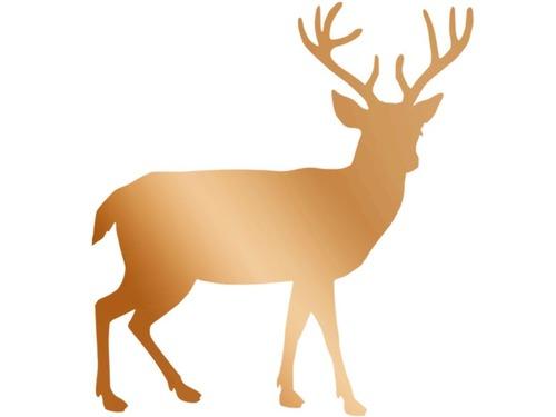 「鹿を売ります」00