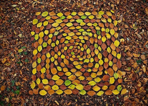 葉っぱや石を並べたアート09
