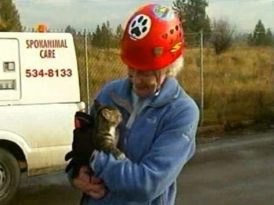 子猫を60歳のおばあちゃんが救出04