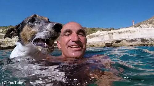 ダイビング犬06